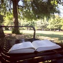 bible on park bemch